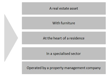 France investment property model
