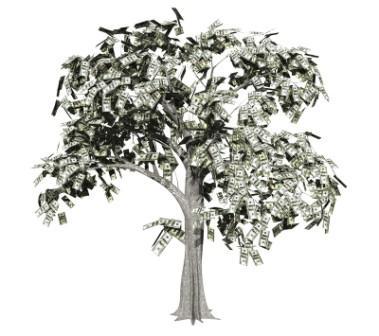 Property cash investor